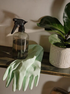 Cleaning Tips for Your Daleville Apartment