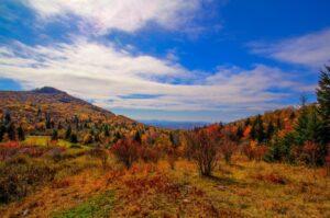 Fall Leaf Viewing in Virginia