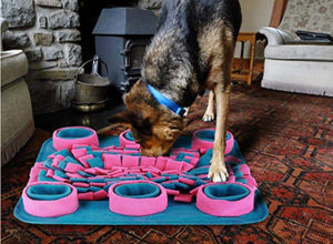 Interactive Dog Puzzle