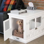 """Decorating Your """"Dog House"""""""